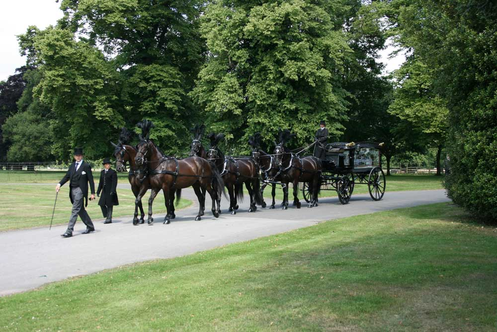 Karen Bassett Carriage Driving & Horse Driven Hearse