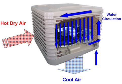 Celsius Evaporative Cooling Systems