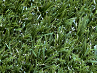 Playrite Synthetic Grass