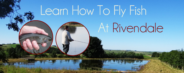 Learn to fly fish at Rivendale