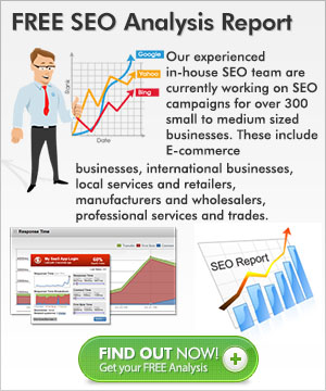 FREE SEO Analysis Report