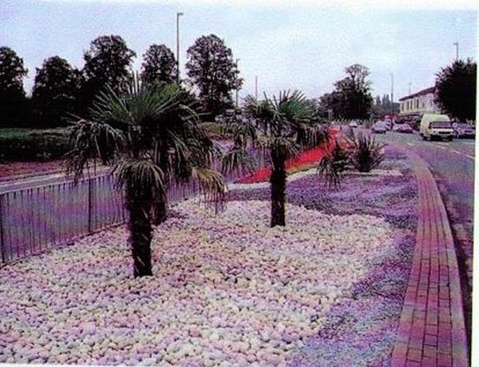 Landscaped Highway