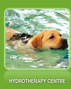 Hydrotherapy Centre
