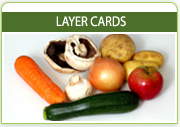 Layer Cards